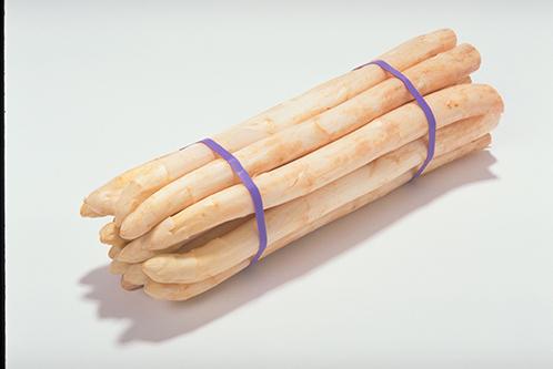 Elastiekbinder Elastobinder gebundelde Asperges